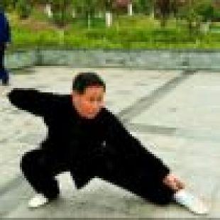 华武扇潘倩v利弊利弊竞技游戏的电子图片