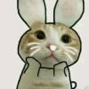 将微信小视频v表情成动图表情搞笑图片qq动感表情包图片