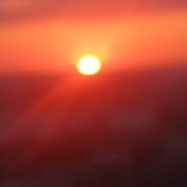 夕阳满树的黄昏
