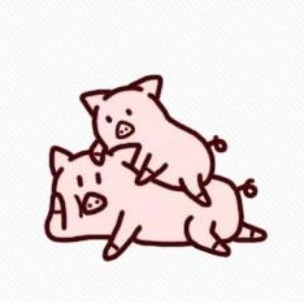 两只噜噜猪