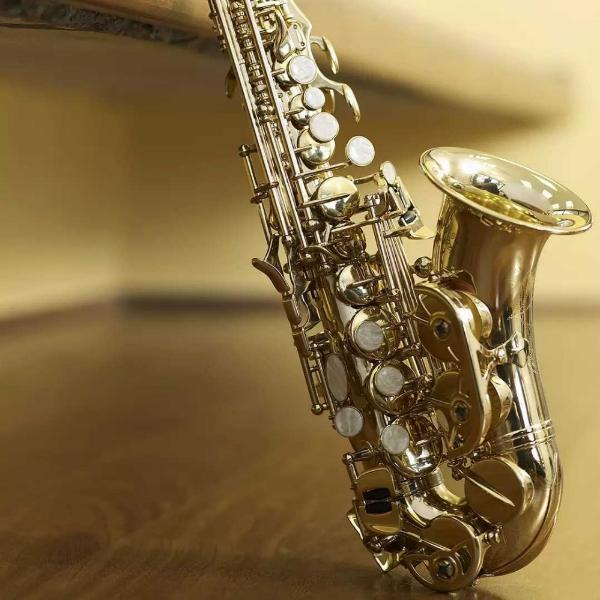 管乐器专业维修