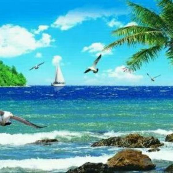 蓝色海洋526081776