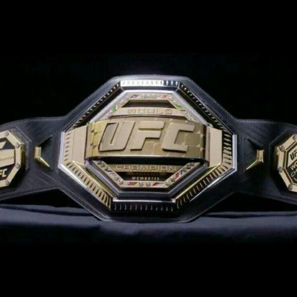 UFC终极格斗赛事