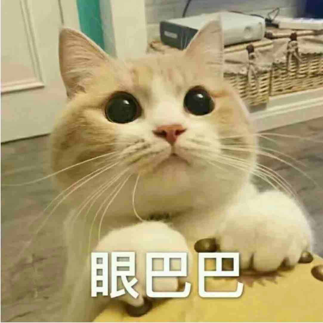 大家好我叫王大迪