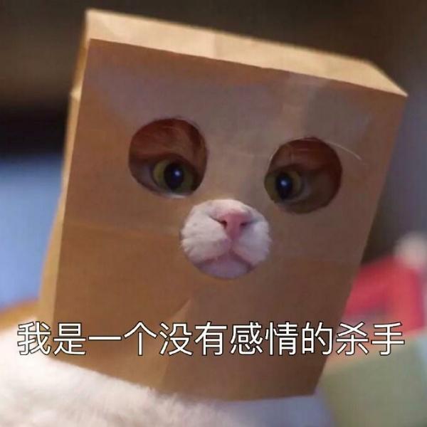 魅惑的Poker_face