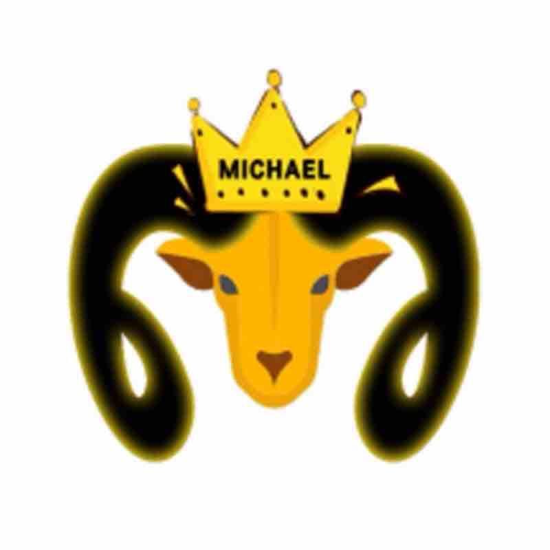 Michael说大片
