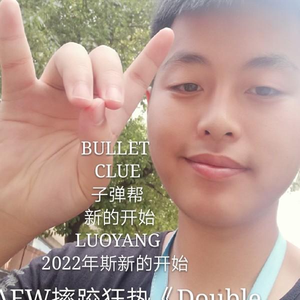 我是yy雷星中国