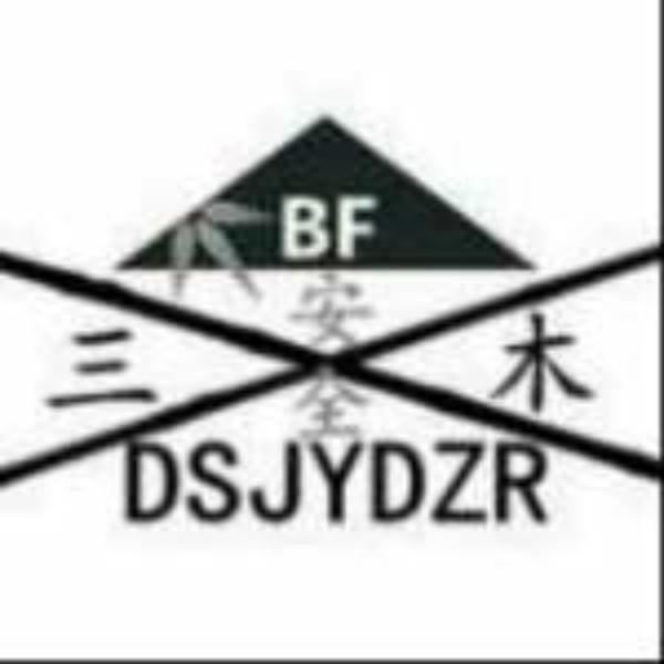 DSJYDZR