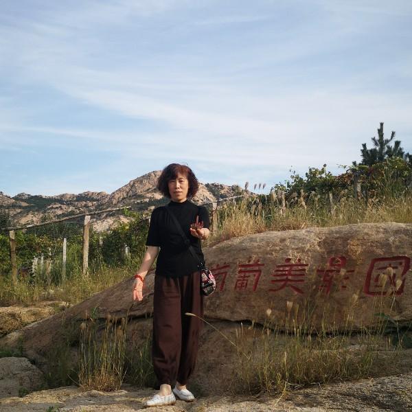 静鑫22019