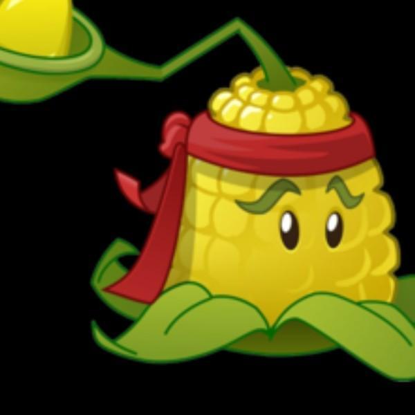 典雅的玉米投手