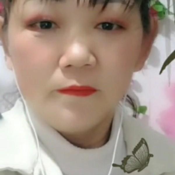 倪金玲53782