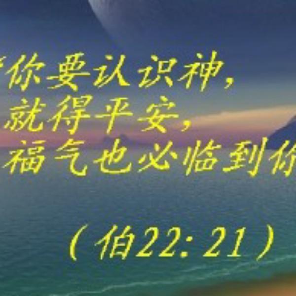 清he1225