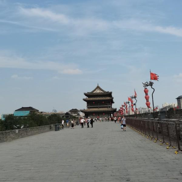 Long香草