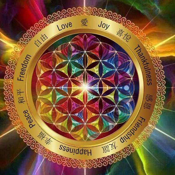 宇宙生命之花