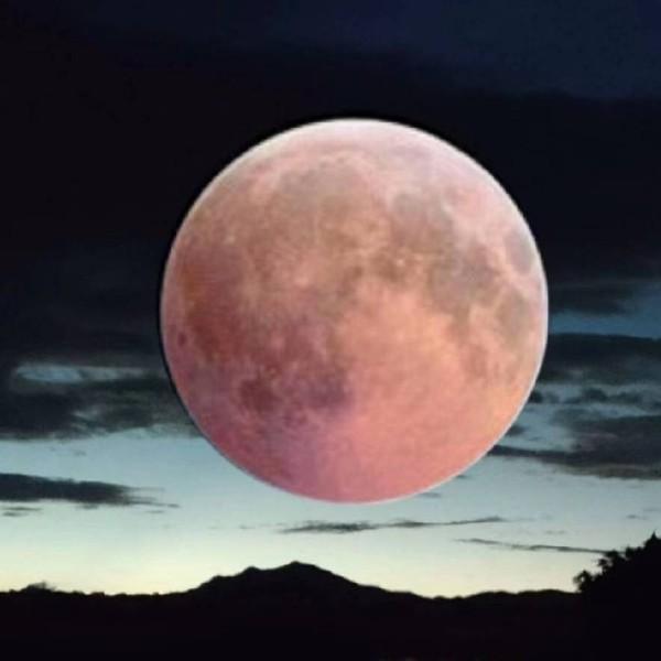 红月亮57797753