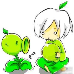 植物大战僵尸2爱好者代轶劼
