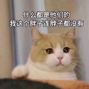 yk宣晨阳