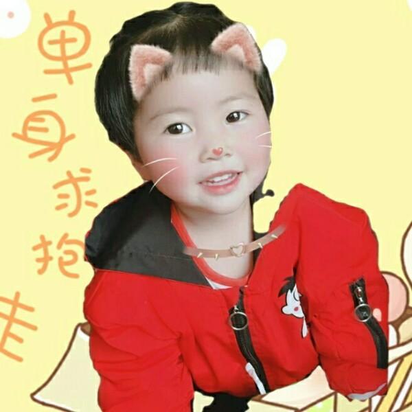 蝶恋花43447