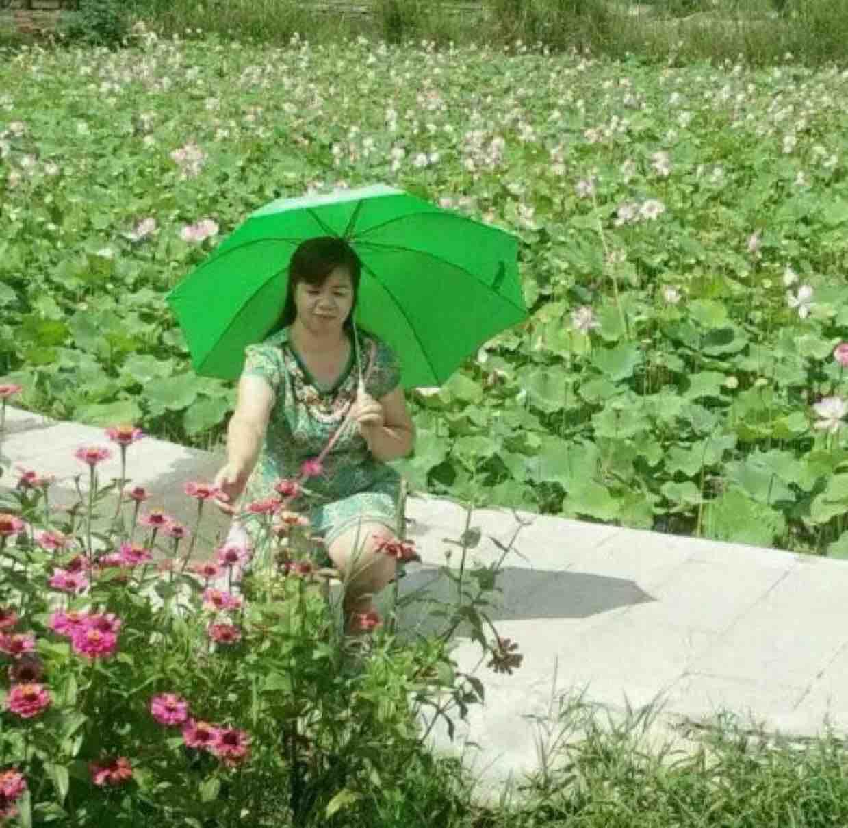 A腾飞B优频道凤凰