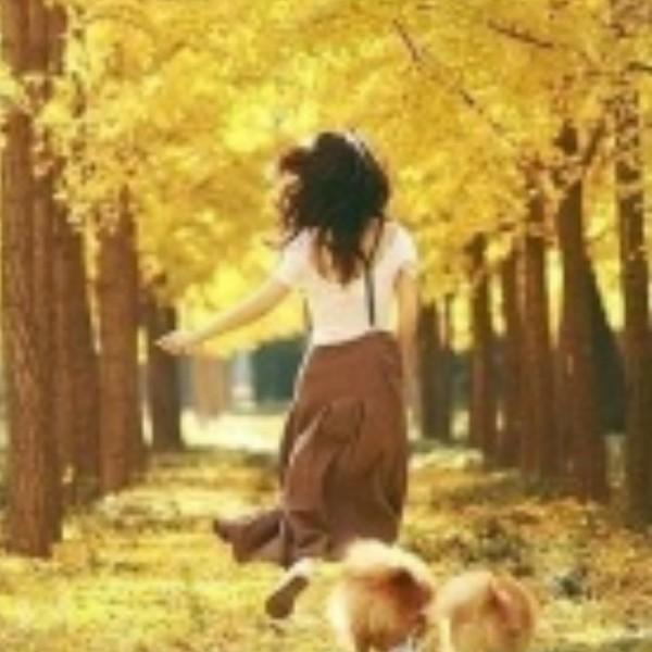 请在秋天叫醒我_