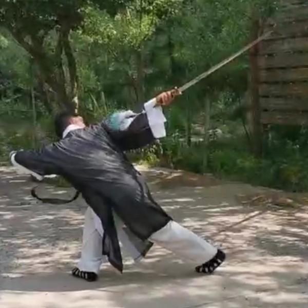 诗剑趁年华