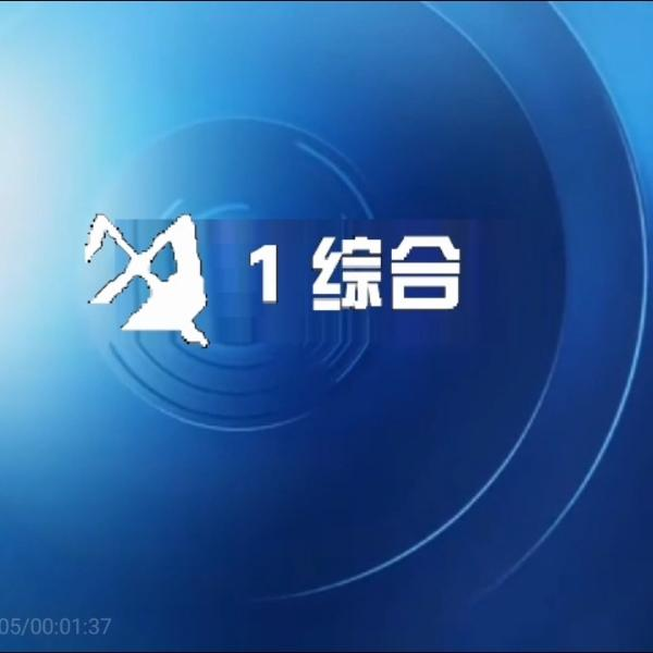 敬朝伟广播电视总台官方