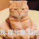 痞子不二情_