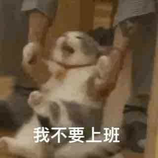 Panda潘德尔