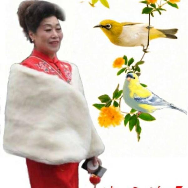 飞杨53401