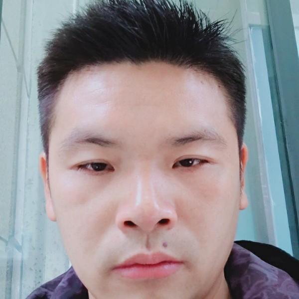 杨志强75604