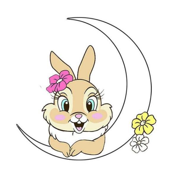 哇呀呀呀的兔子