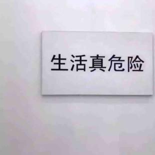 金馆长001