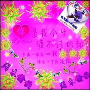 碧落黄泉红尘紫陌5