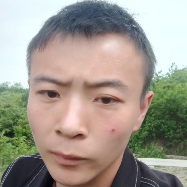 巅峰同志de大黄蜂