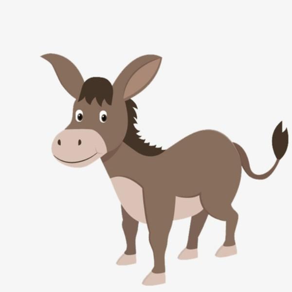 送你一头小毛驴