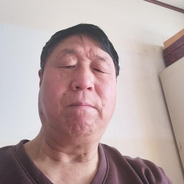 文刘金顺29125