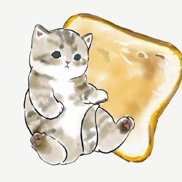 面包小猫咪
