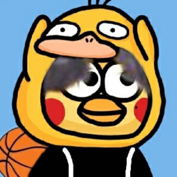 爱打篮球的小黄鸭