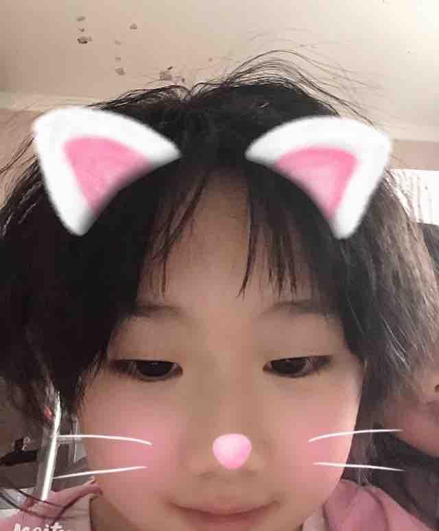 shixin798217