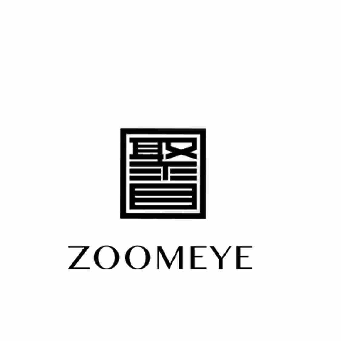 聚目ZoomEyeStudio