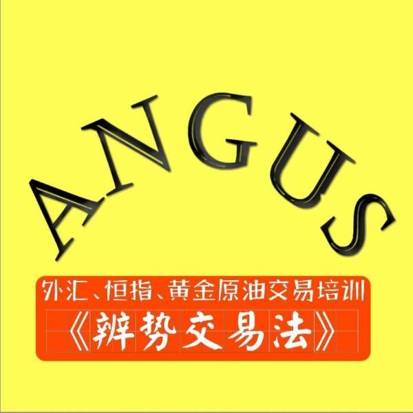 安格斯的系列课程