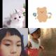 猫和熊萌和艾乐园