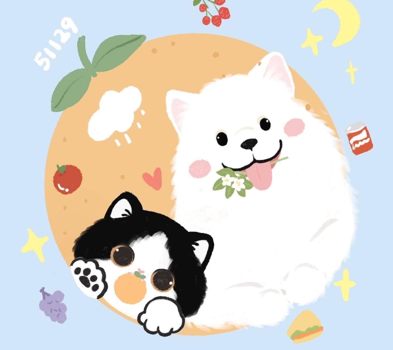 猫猫和熊猫是一家