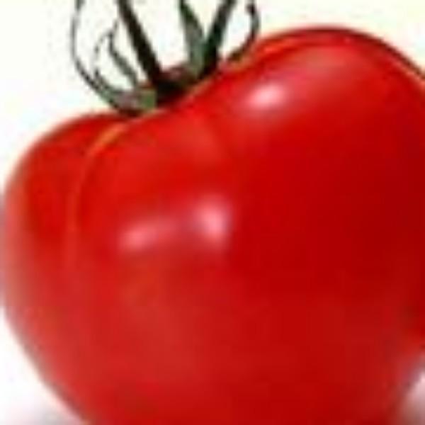小番茄影视