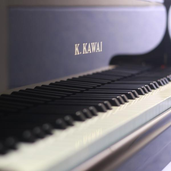 温州以勒琴行_纯子钢琴