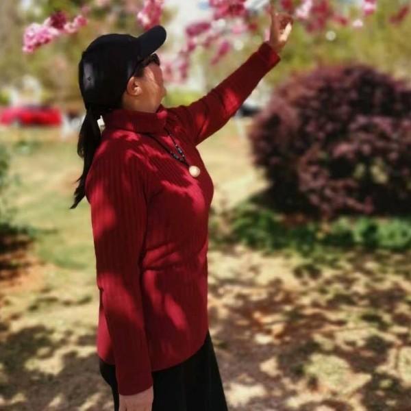 红枫叶47519539