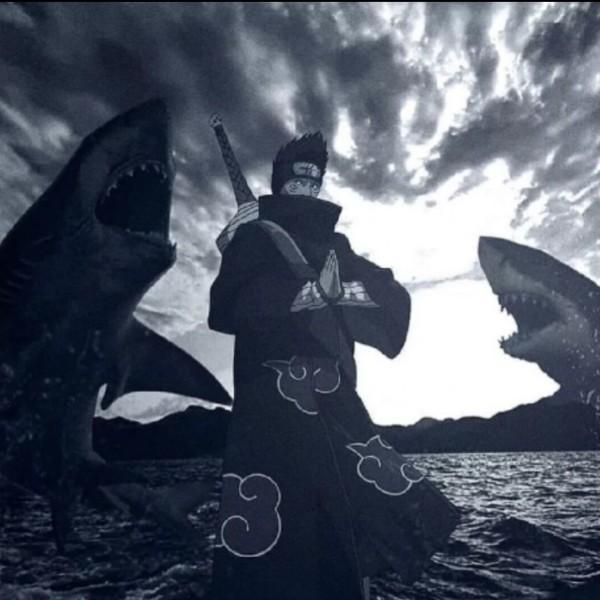 鬼鲨guisha