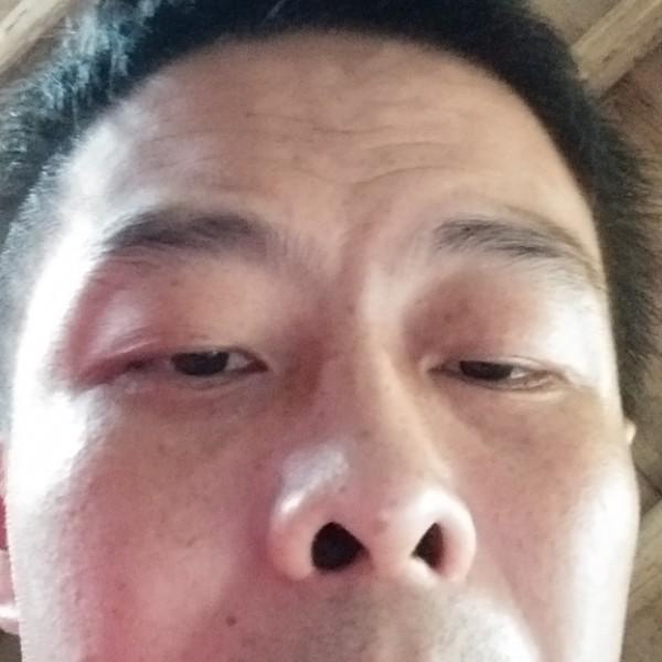 中华86353