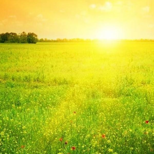 岁月静好-笑靥如花