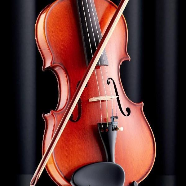小提琴庄园别墅